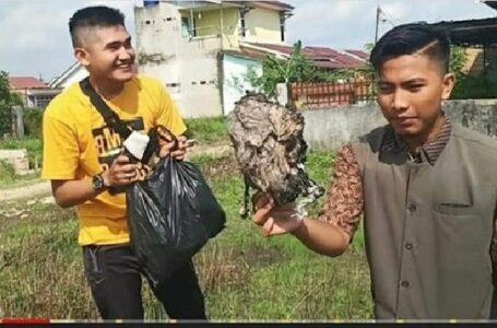 Pedagang Sayur Jadi Tersangka Youtuber Prank Sampah Palembang